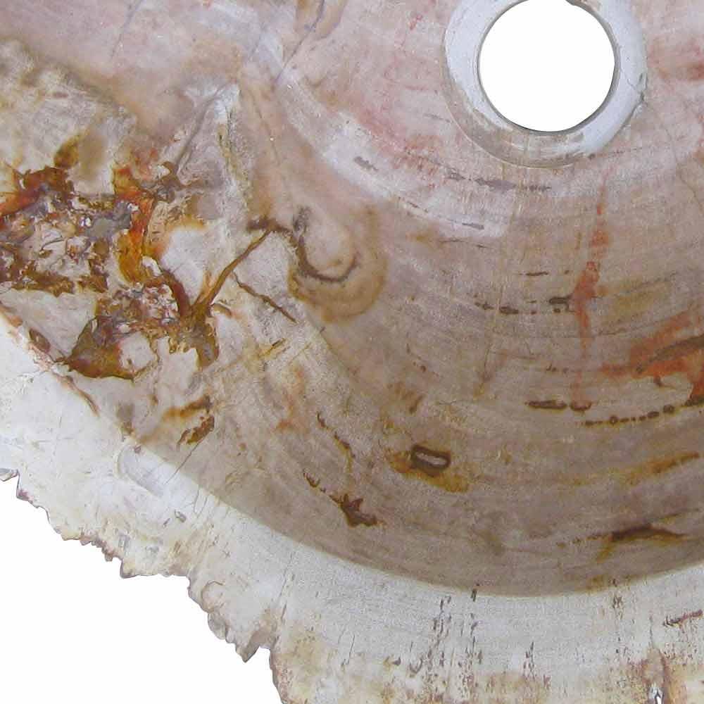 Aufsatzwaschbecken aus versteinerten Holz Unikat Goa Modell