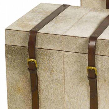 2 Designstämme in Grau Pony Ritini, groß und klein