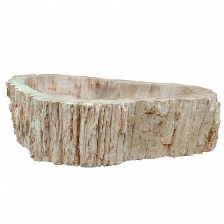 Aufsatzwaschbecken aus Fossilholz Unikat Goa